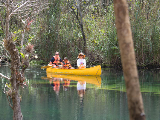 Tulum-Tankah Cenotes Eco-Adventure Tour | Go Cancun Pass