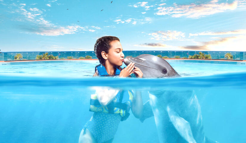 Dolphin Encounter at Akumal with transportation Cancun