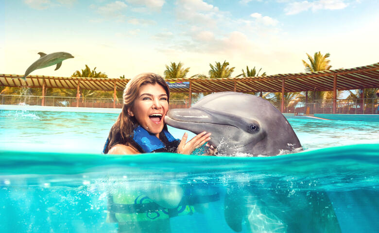 Dolphin Encounter with lunch, Maroma beach club access and transportation