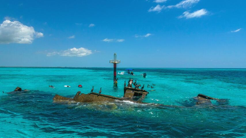 Reef, Turtle and Shipwreck Snorkeling Tour Cancun