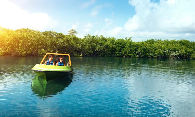 Jungle Speedboat tour Cancun