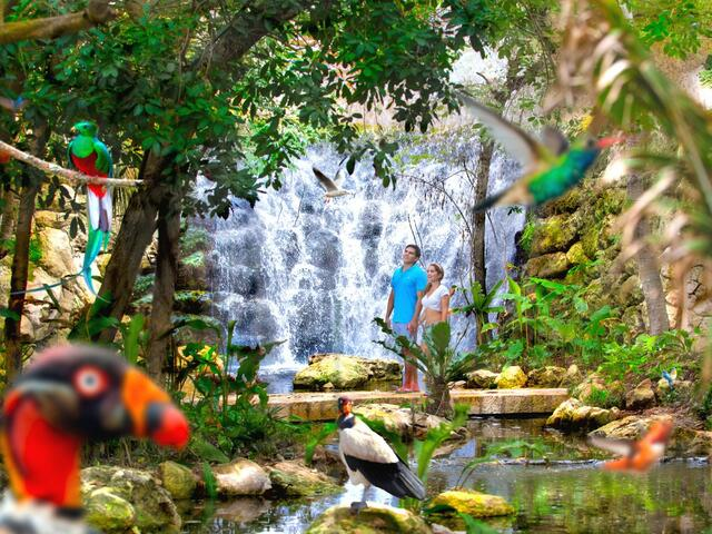 Xcaret Park Admission | Go Cancun Pass