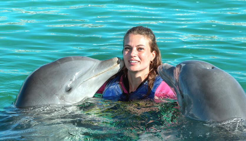 Dolphin Encounter by Dolphin Discovery