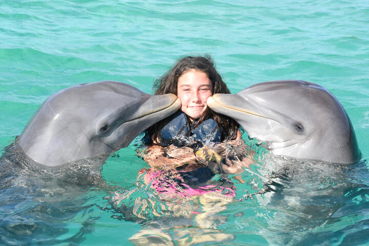 VIP Royal Swim with the Dolphins in Isla Mujeres