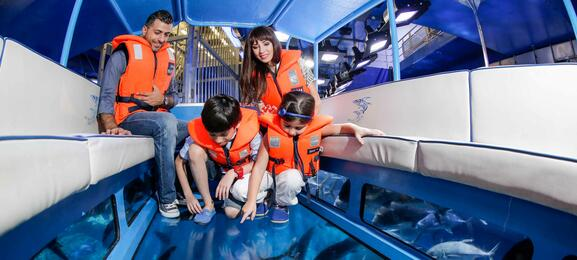 Dubai Aquarium & Underwater Zoo | Go Dubai Pass