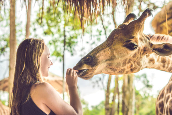 Zoo Miami Tickets | Discounts With Go Miami Pass | Admission