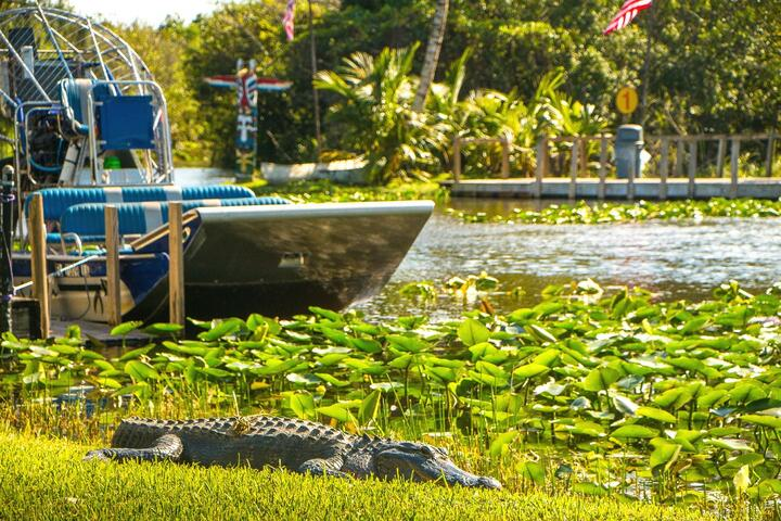 Gray Line Miami: Everglades Airboat Adventure Tour | Go Miami Pass