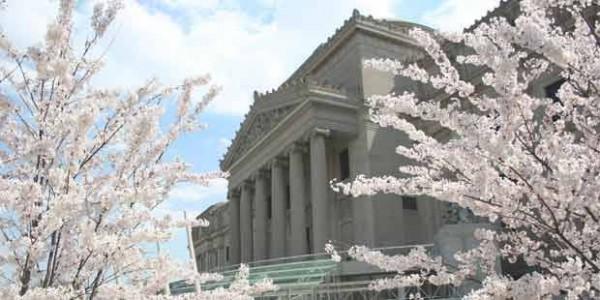 Brooklyn-Museum-and-Brooklyn-Botanic-Garden-2 - Copia