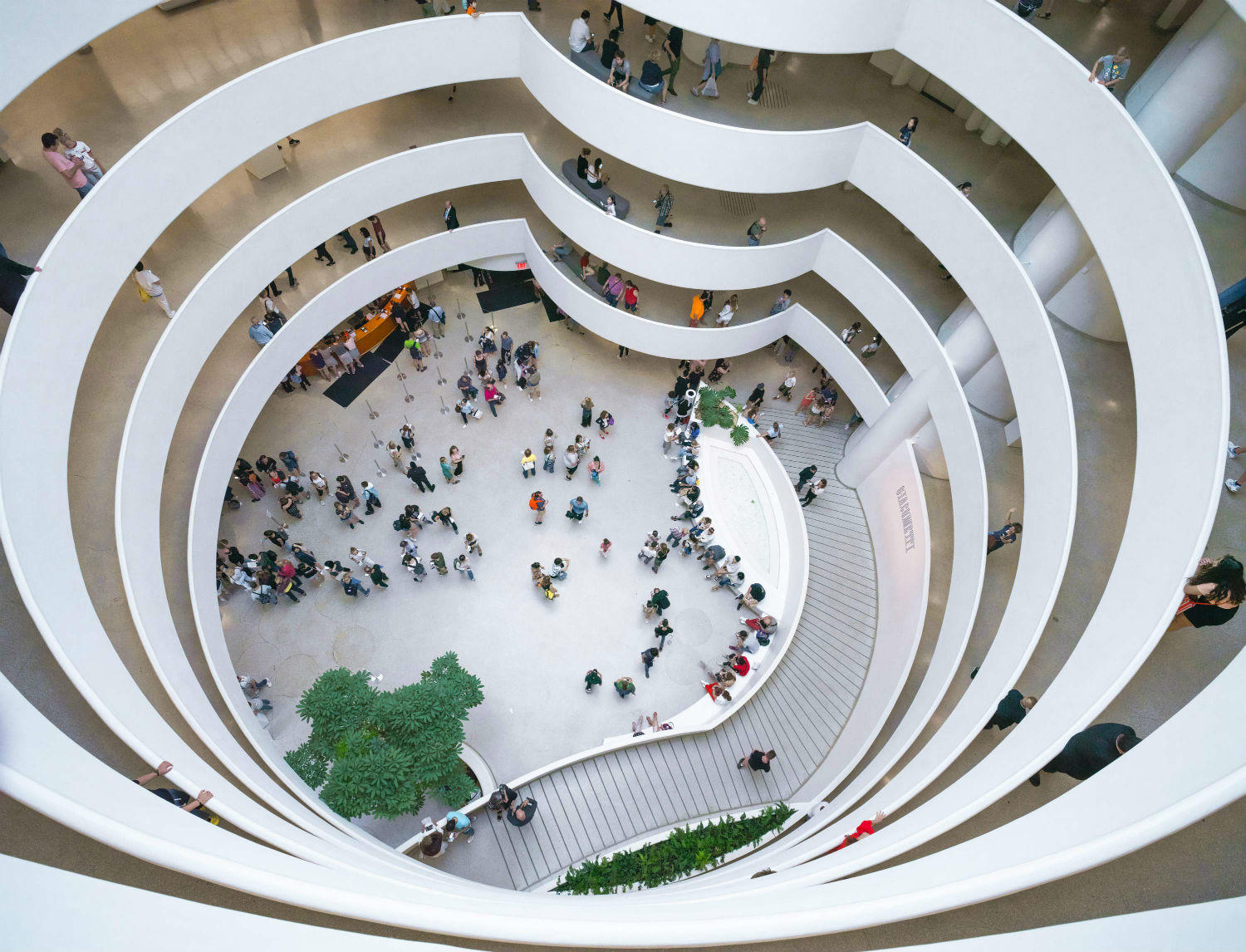 Guggenheim Museum New York Tickets | New York Explorer Pass