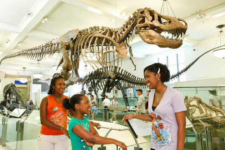 American Museum of Natural History tickets discount | New York Explorer Pass