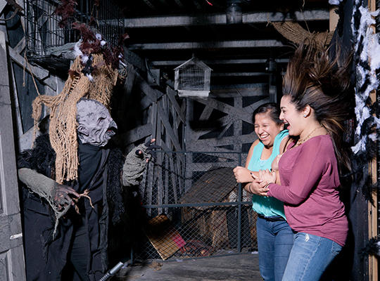 Ripley's Haunted Adventure Facts