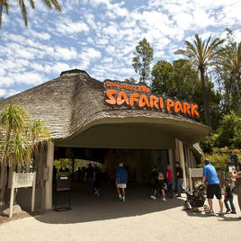 safari entrance