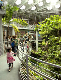 California Academy of Science Tickets | GO San Francisco Pass
